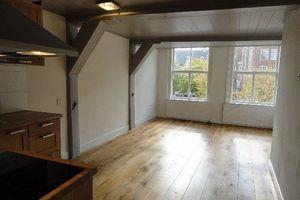 Te huur: Appartement Leiden Nieuwe Rijn
