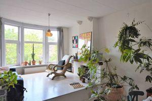 For rent: Apartment Rotterdam Aelbrechtskade