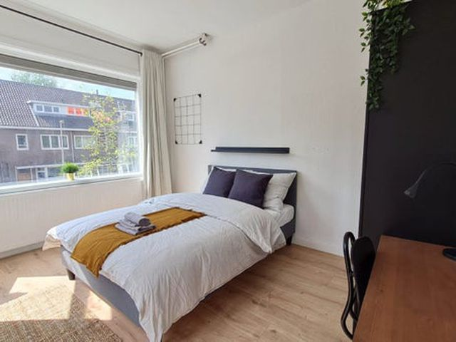 For rent: House Utrecht Rhijnvis Feithstraat