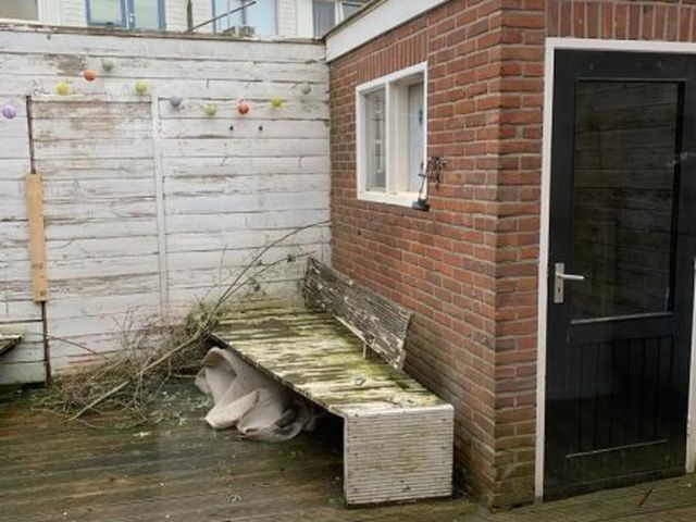 For rent: House Sneek Willem de Zwijgerstraat