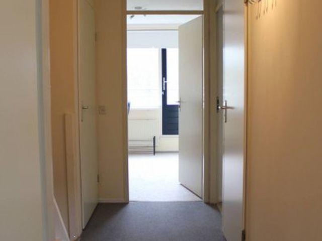 For rent: Apartment Den Haag Zeewindelaan