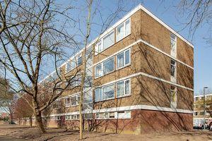For rent: Apartment Rotterdam Philip Vingboonsstraat