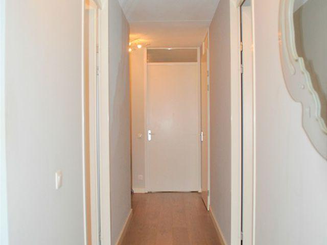 For rent: Apartment Rotterdam Adamshofstraat