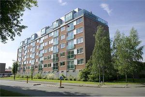 For rent: Apartment Breda Walenburgstraat